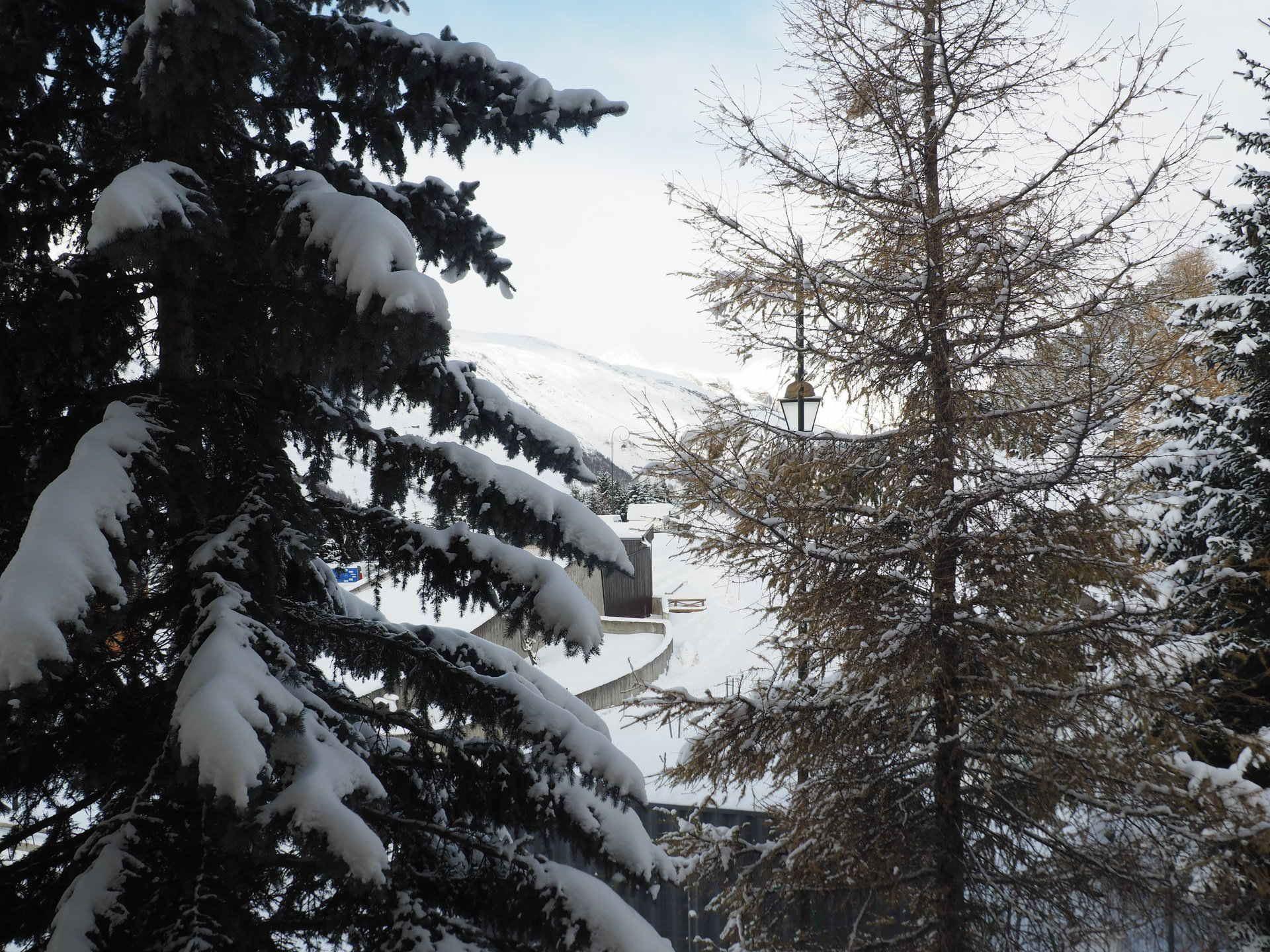 2 Pièces 6 Pers skis aux pieds / CORYLES A 242
