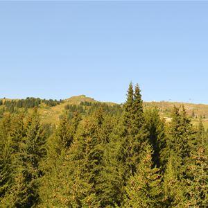 3 pièces, 6 personnes / Jardin Alpin 204A (Montagne de rêve) / Séjour Sérénité