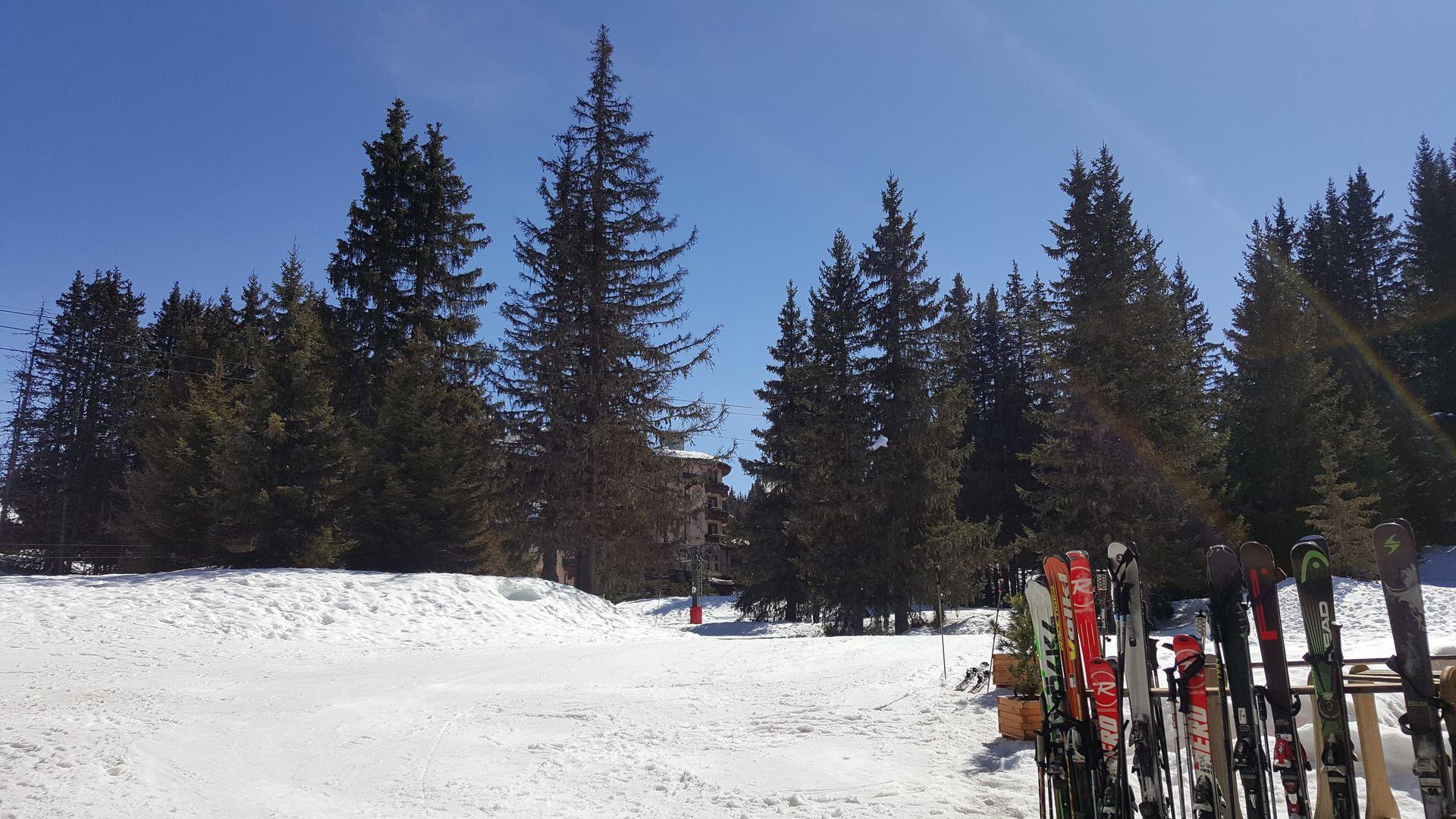 1 studio 4 personnes, skis aux pieds / Domaine du Jardin Alpin 6B (Montagne)