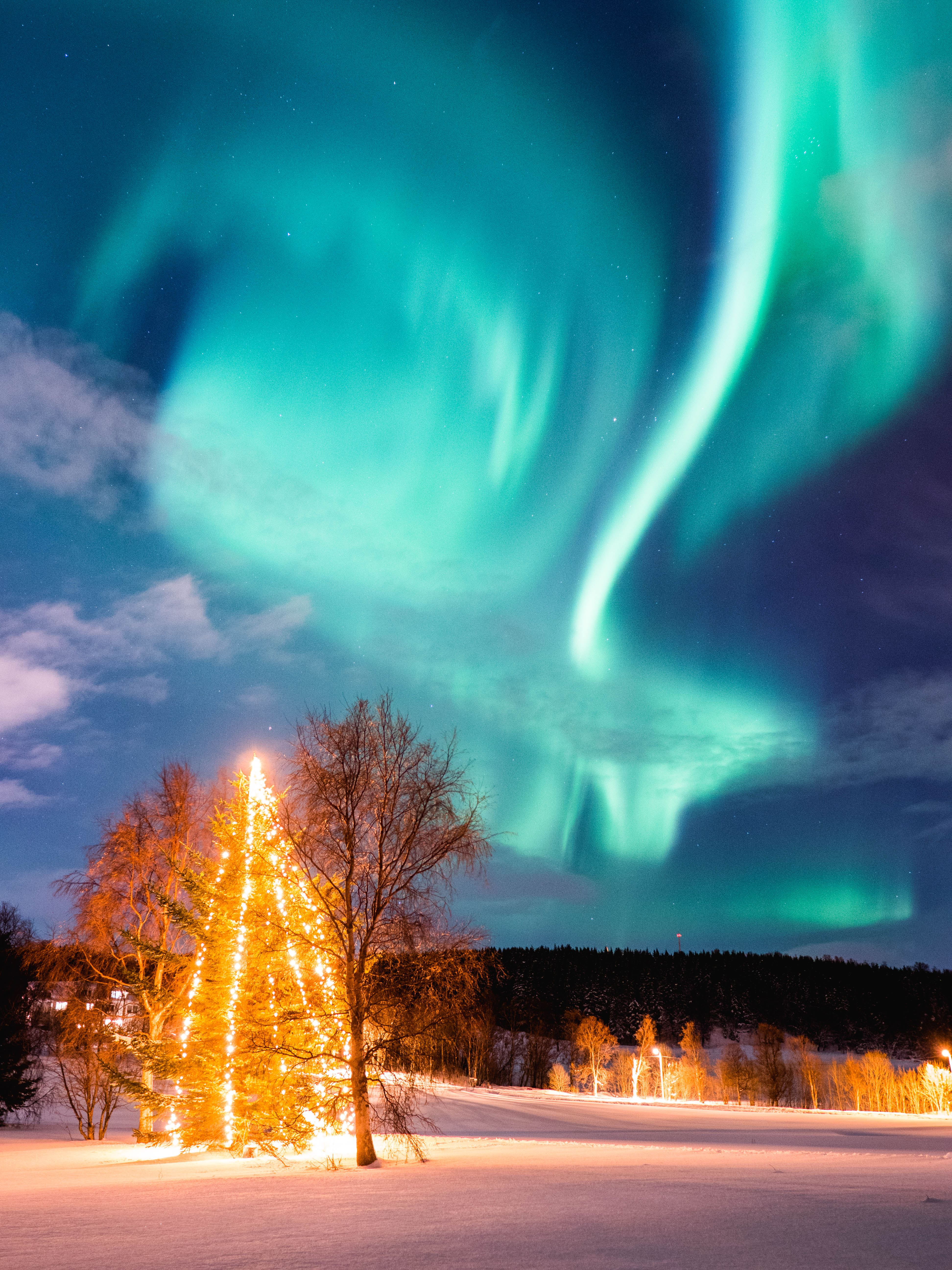 Aurora Borealis – Your Tailored Tour - Arctic Breeze