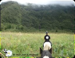 Balade équestre : circuit des cascades à cheval