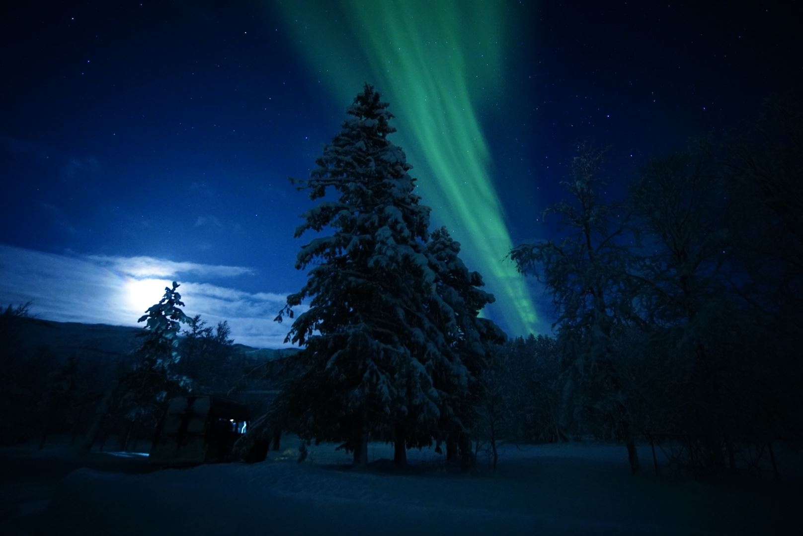 Northern lights chase for private groups - Aurora Basecamp - LyngenTourist