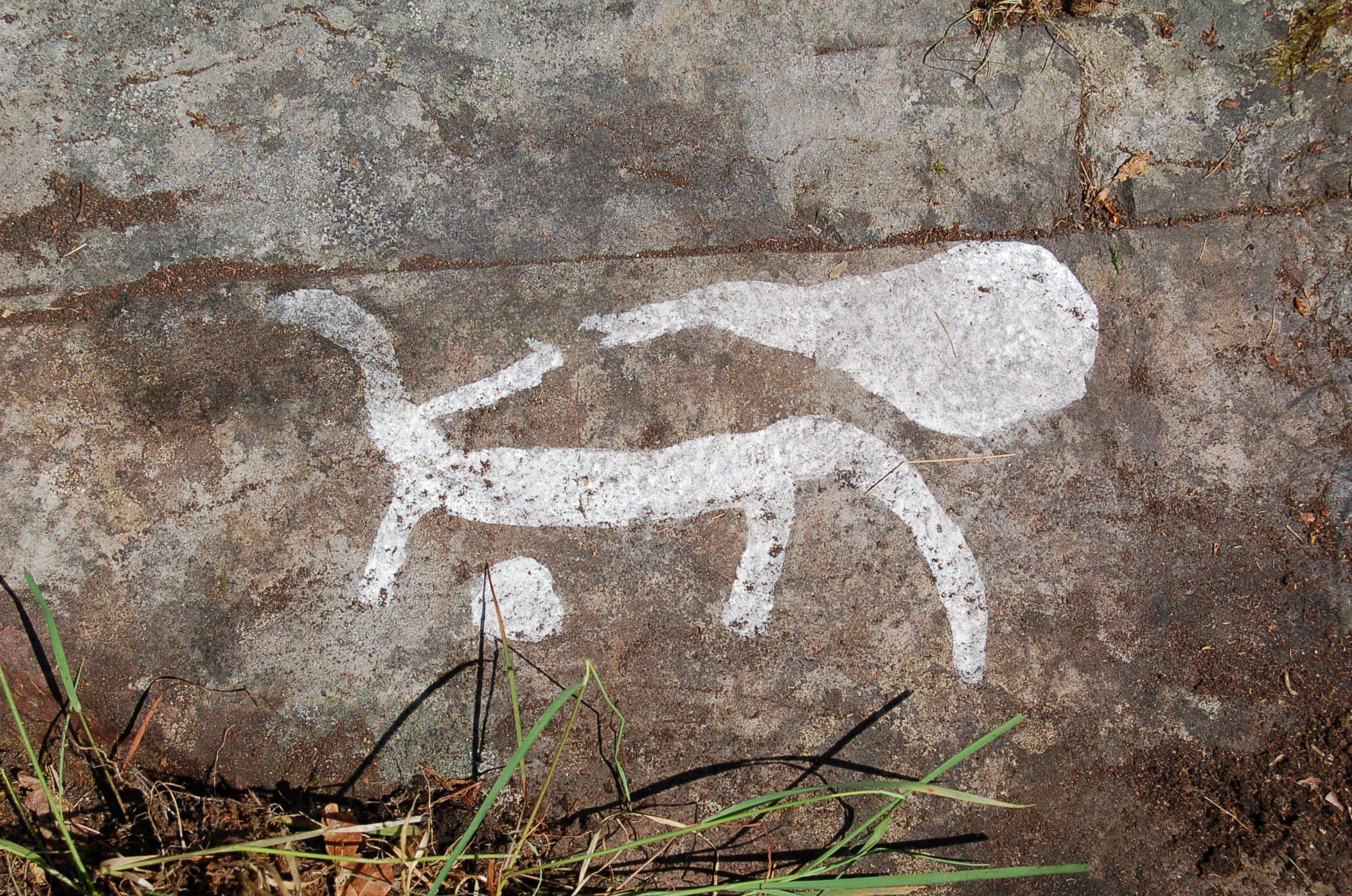 Guidning av bronsålderslandskapet vid Casimirsborg