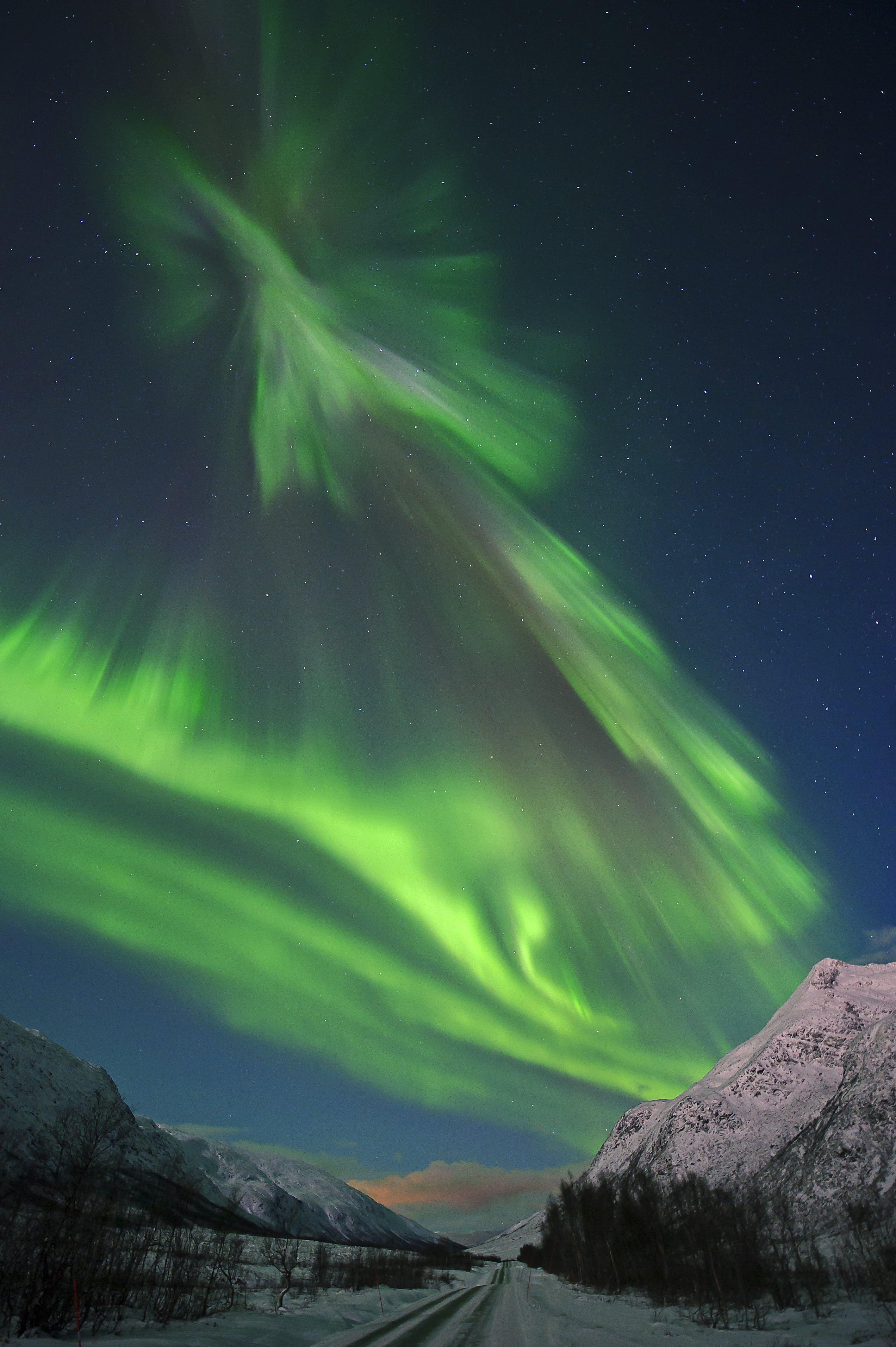 Aurora - Northern Lights Bus tour – Ersfjordbotn Brygge