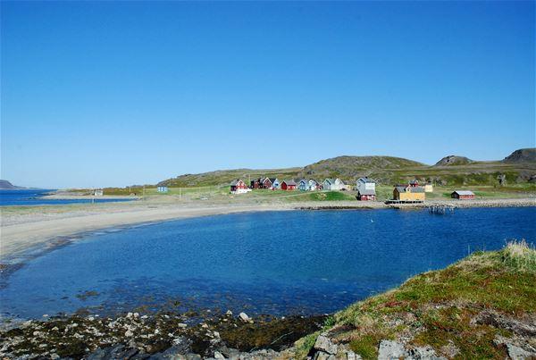 Bilde av Kongsfjord på sommeren, med hus og strand og hav på bildet.