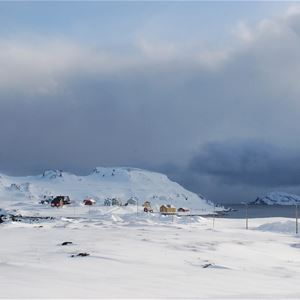Bilde av Kongsfjord på vinteren