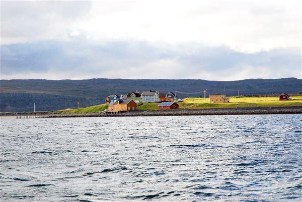 Kongsfjord på sommeren.
