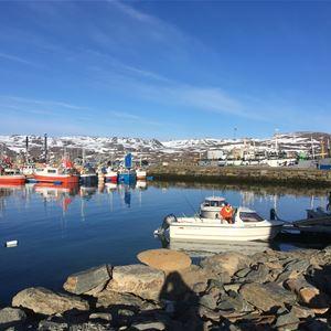 Bilde av båter som ligger i havna, noen av disse eies av Båtsfjord brygge. Bildet er tatt på våren, når vårsola er oppe å det er lite sne på fjellene.