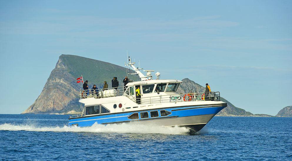 Deep Sea Fishing by boat - Ersfjordbotn Brygge