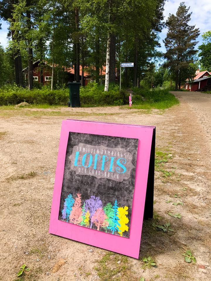 Stina Schulstad,  © Stina Schulstad, Vedaloppisen