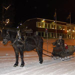 Tärnaby Fjällhotell - hotel rooms
