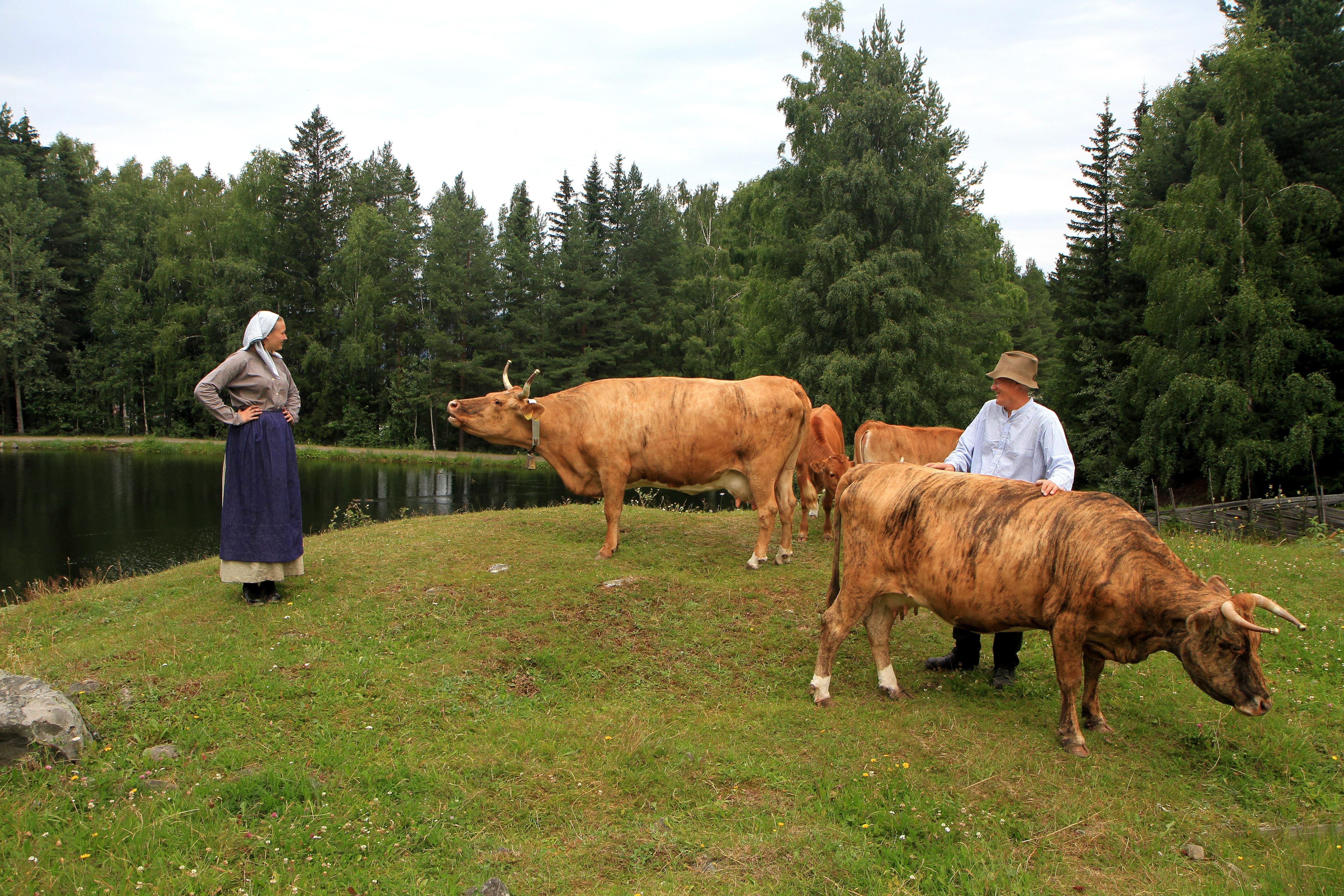 Barnas sommerdag på Maihaugen
