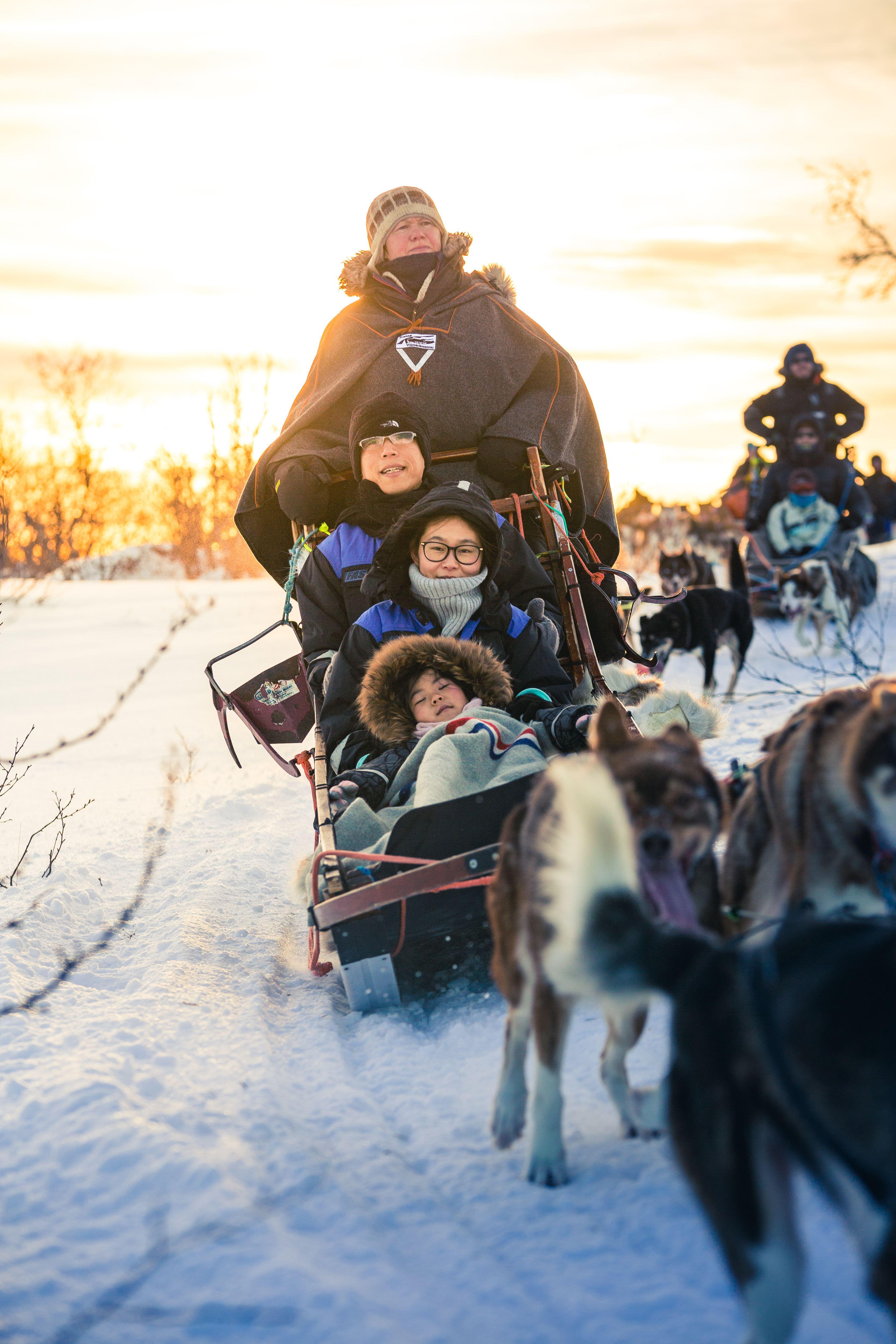 Aurora Camp and Dog Sledding Ride - Tromsø Villmarkssenter