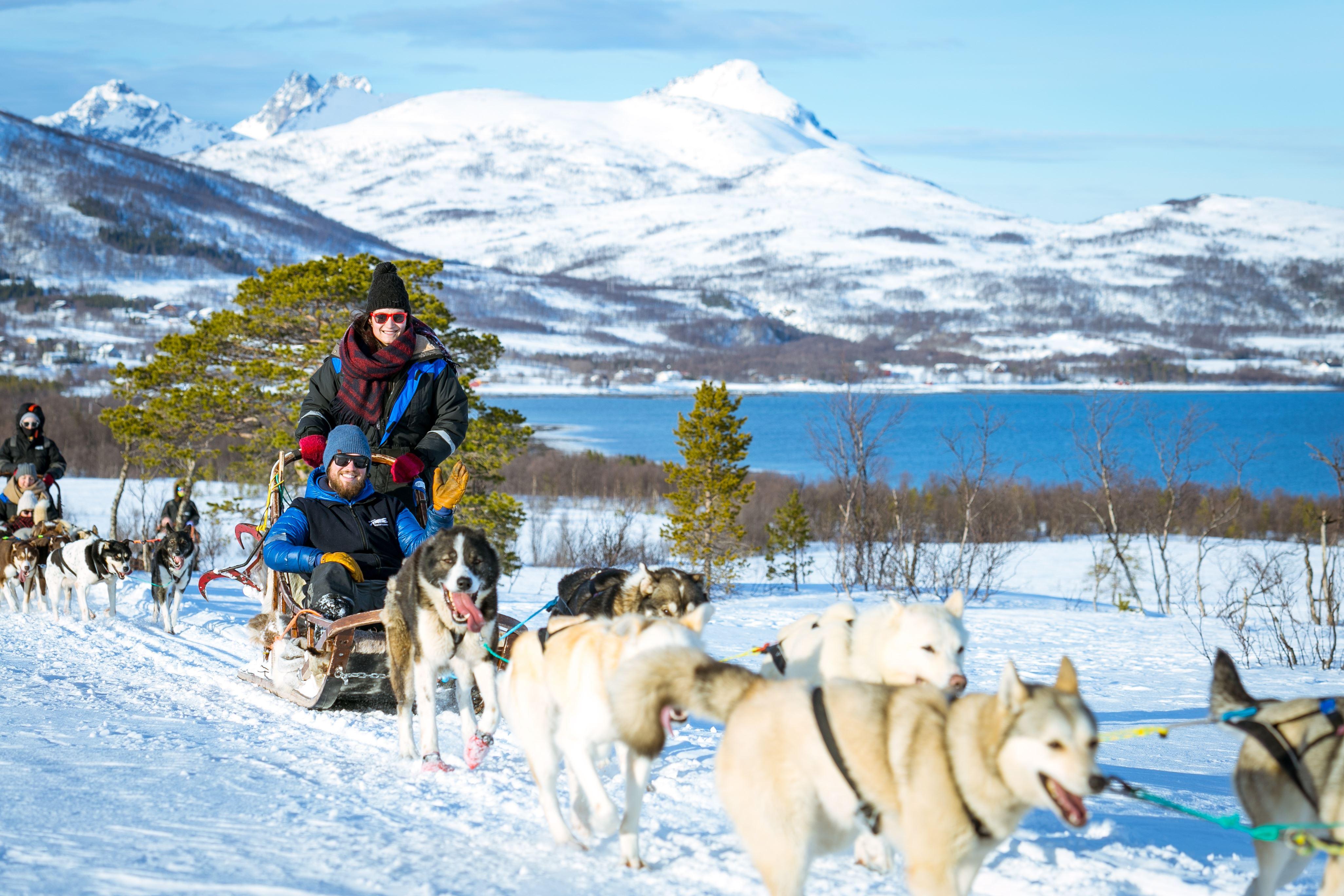 Arctic Spring Dog Sledding - Tromsø Villmarkssenter