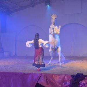Les Cabarets Équestres de Camargue