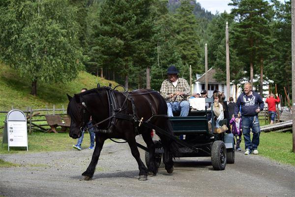Family Day Norwegian Road museum