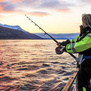 Fishing in Norway - Laukvik Fiskecamp