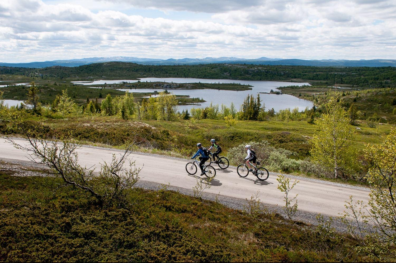 Peer Gynt vegen, nord for Lillehammer