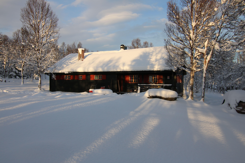 Polar Cabin Besøk med Lunsj - Polar Cabin