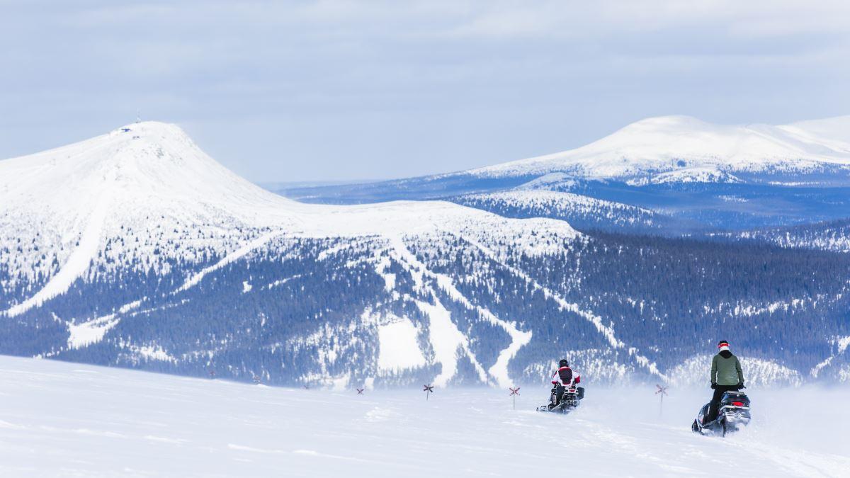 Snöskotrar längs skoterled i Lofsdalen