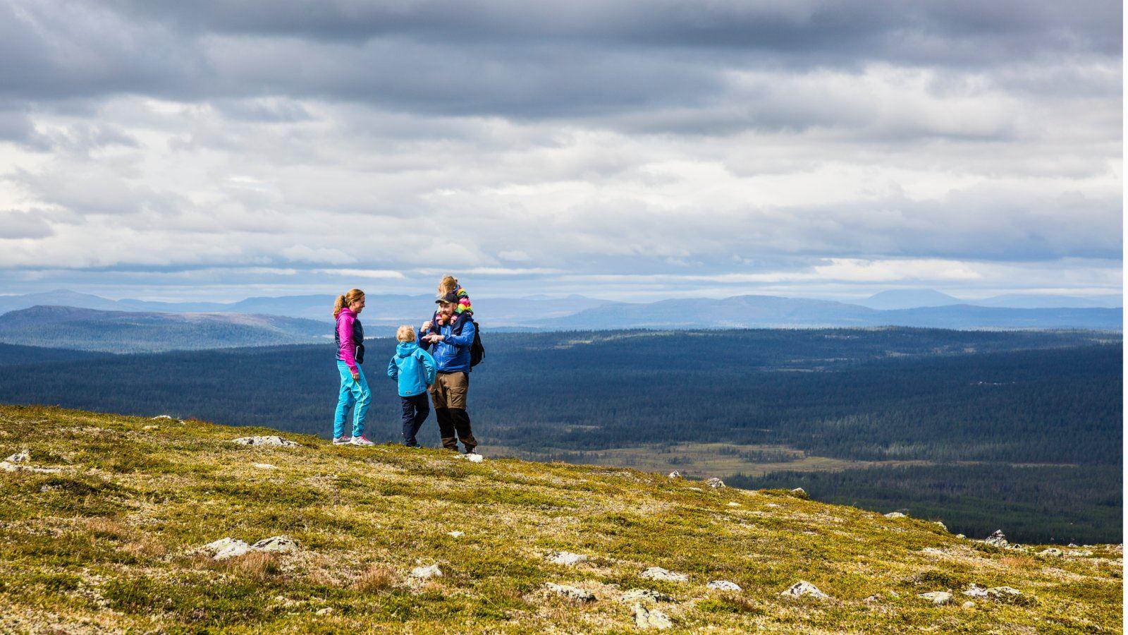 Guidad fjällvandring i Lofsdalen