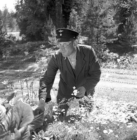 © Järnvägsmuseet, Ulrika Rydh berättar om SJ som trädgårdsmästare