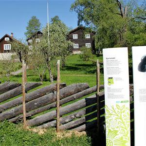 Bjerkebæk - Sigrid Undsets hjem på Lillehammer