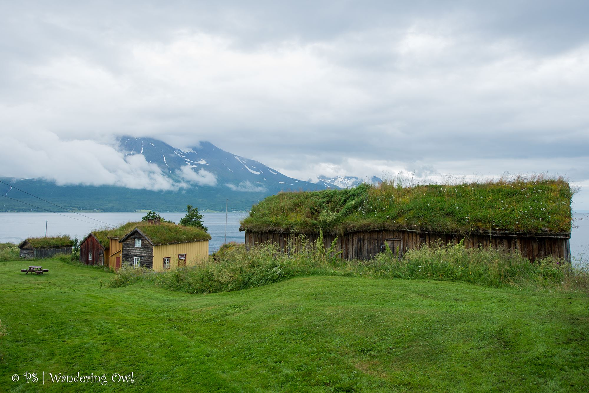 Nature Wonders – Northern Norway in 5 Days - Wandering Owl