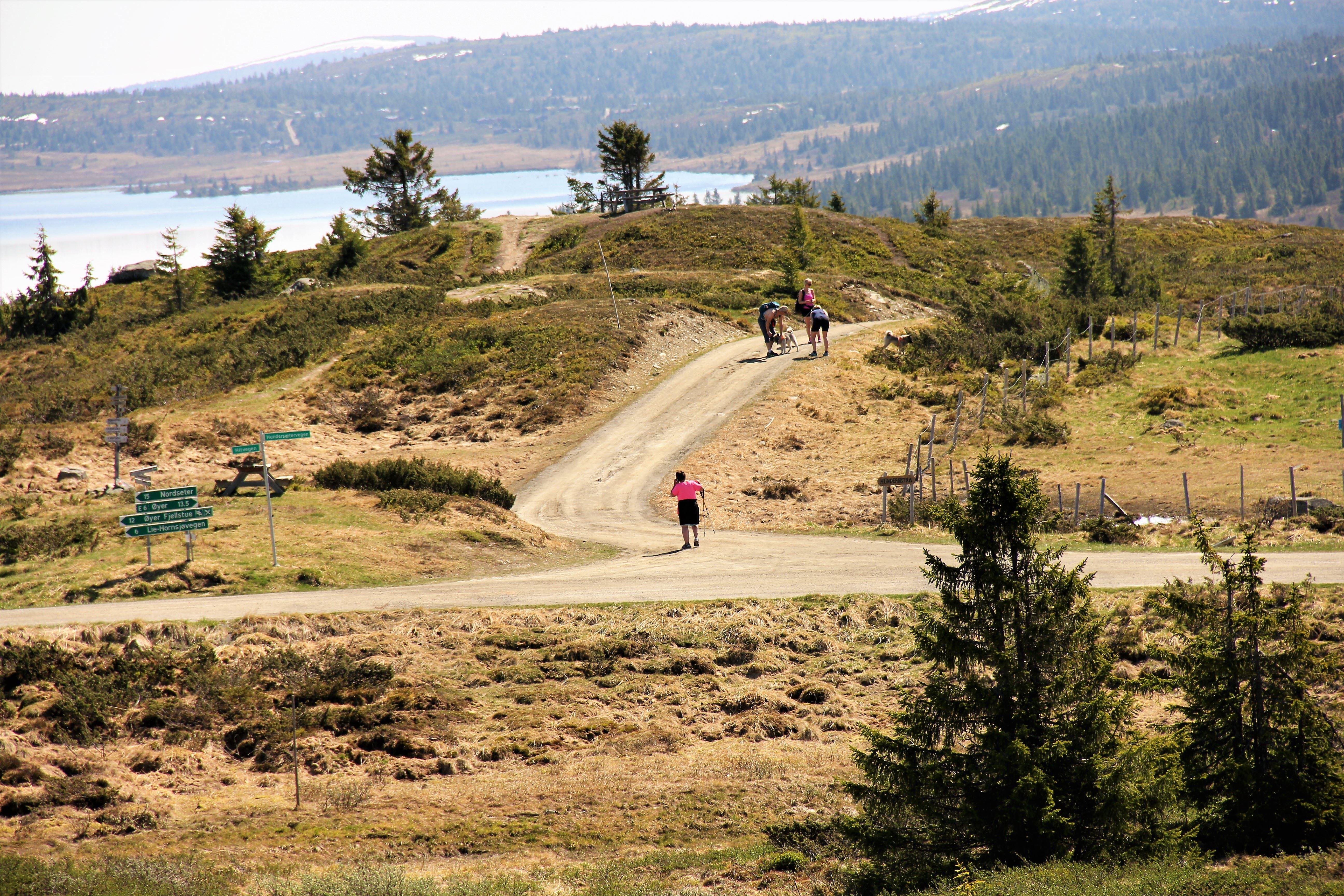 Turstier i Øyer kommune