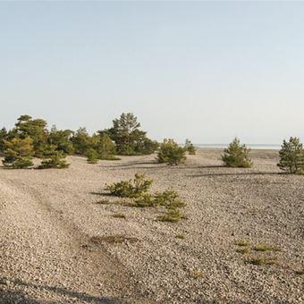 Unterkunfte Aminne Slite S42148 Private Ferienhauser Gotland 4