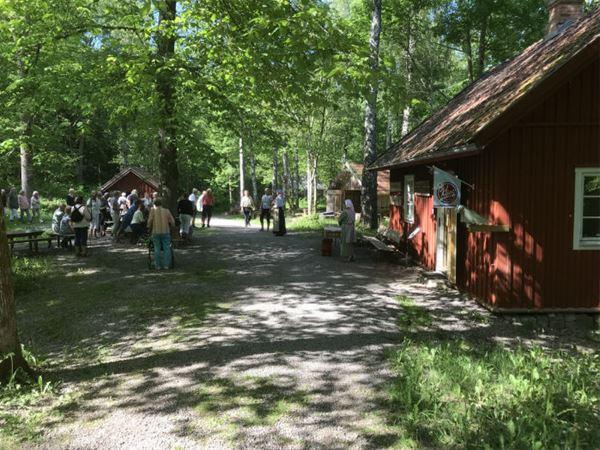 STF Lugnåsberget Vandrarhem