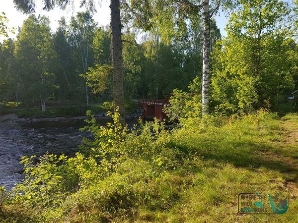 Naturskön vildmarkscamping