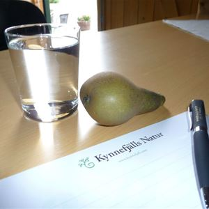 STF KynnefjällsNatur