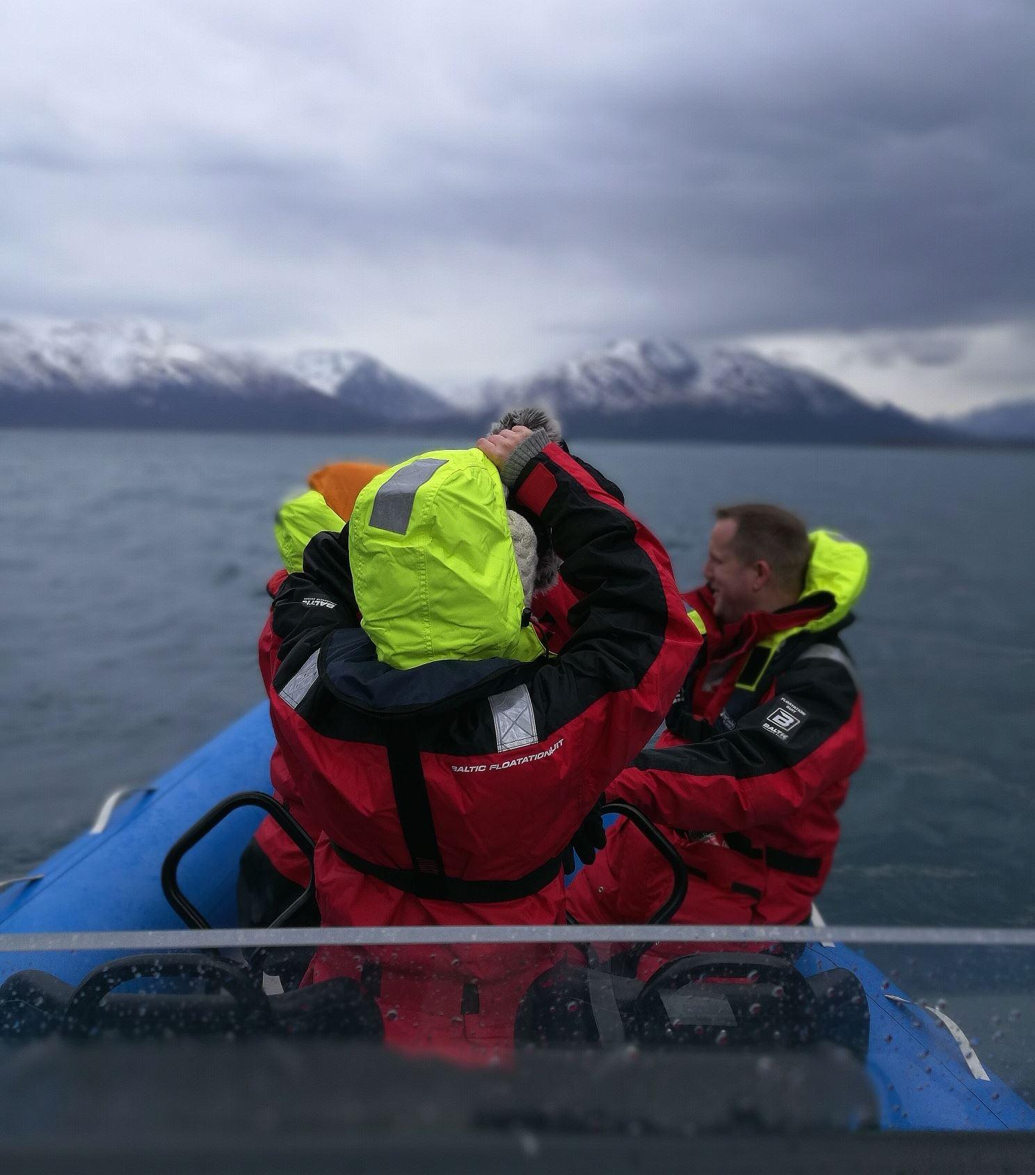 Opplevelsestur med RIB båt på Lyngenfjorden