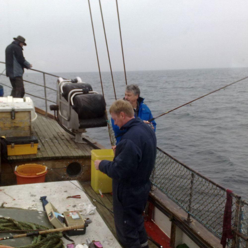 Kabeljau angeln auf der Apenrader Förde mit der M/S Mik Pedersen