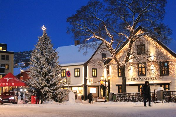 Opening of the Christmas street in Lillehammer