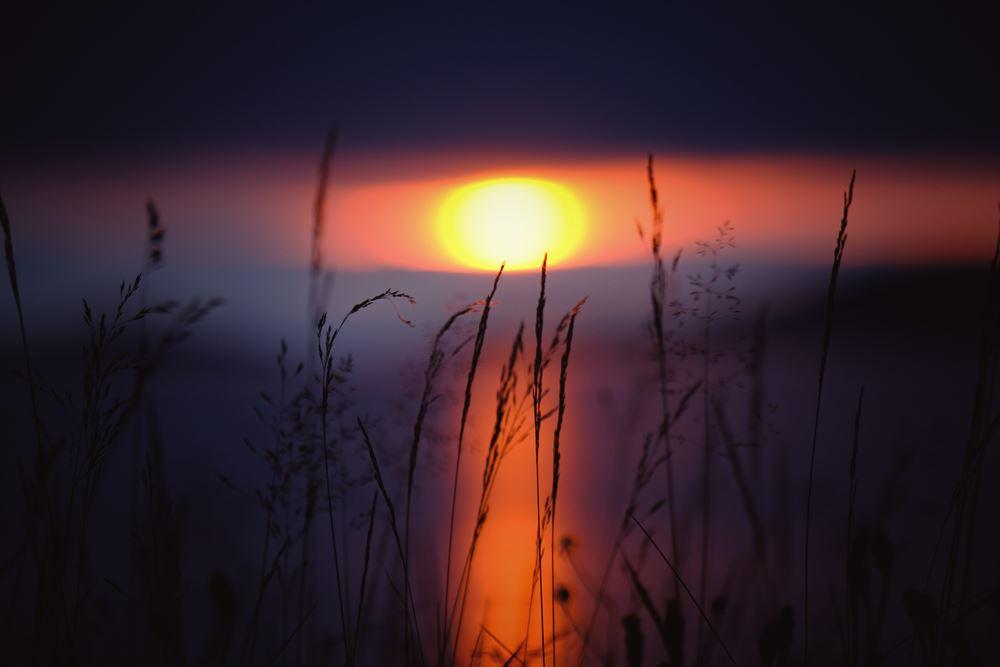 Best Kept Secret: Midnight Sun Hike & Sami Culture