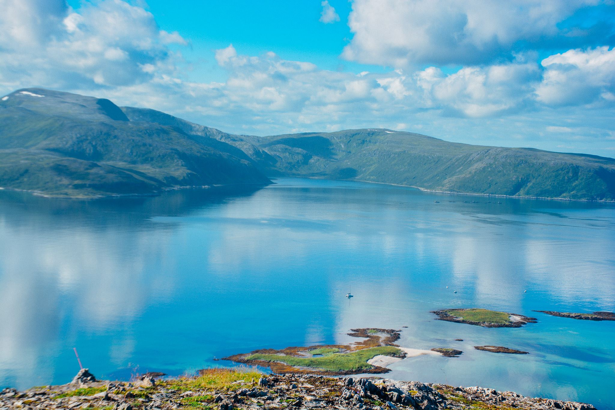 Tesla x Fjord Sightseeing