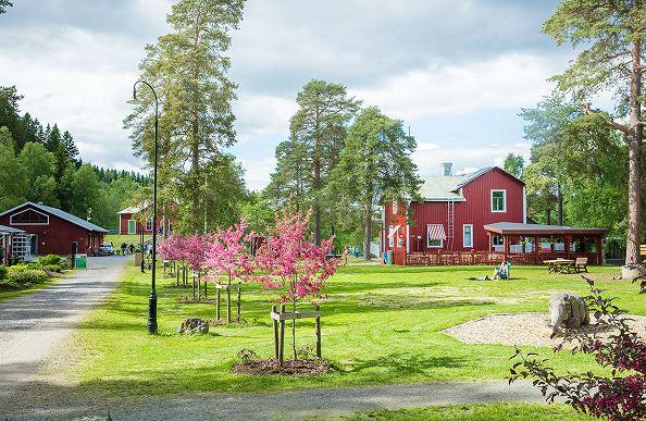 Sommarträning med Iksu på Umeå Energicentrum