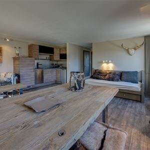 2 rooms, 4 people / Melezes 3 (Mountain of Charm)