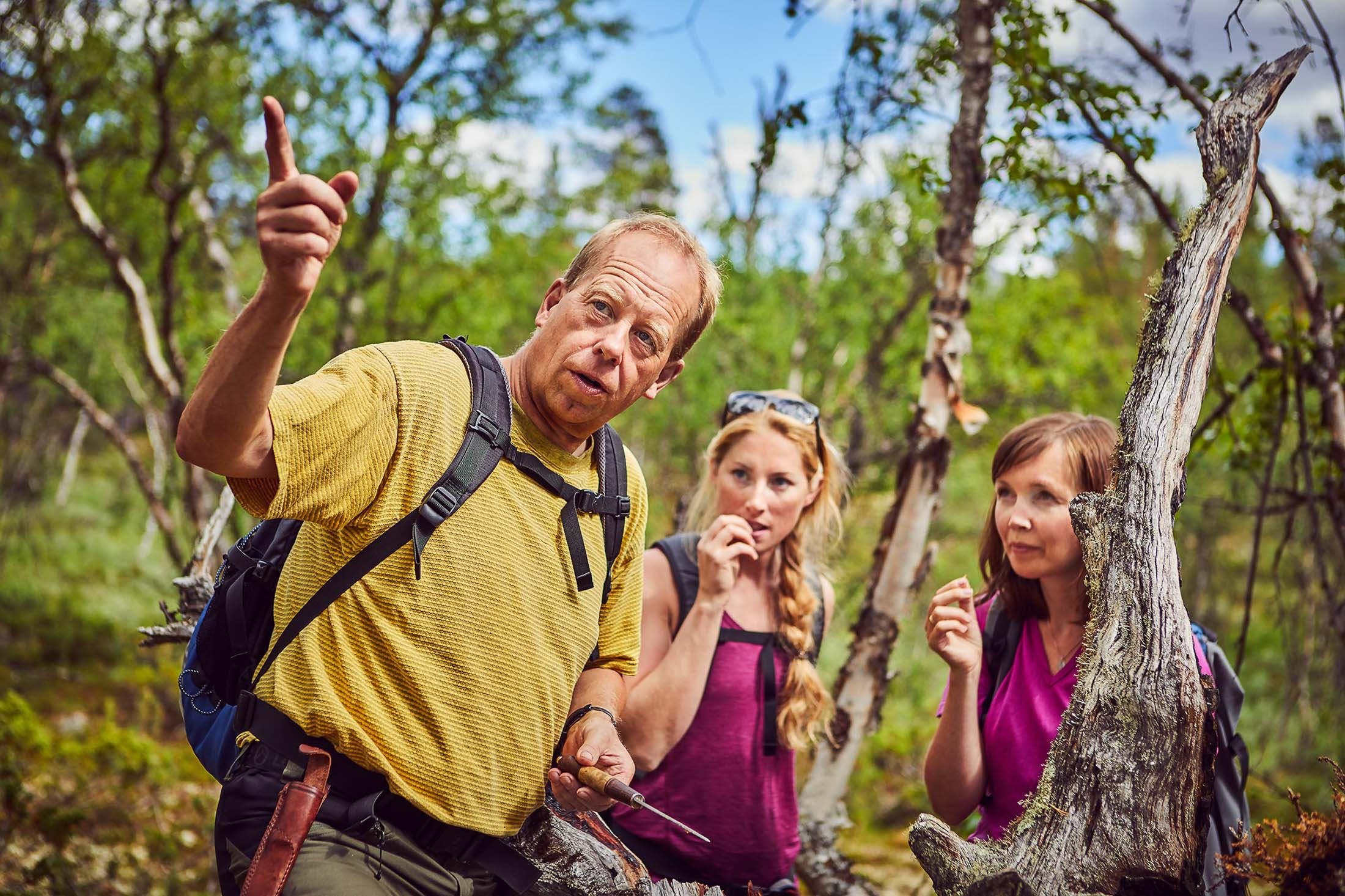 Urskog safari i Sjodalen
