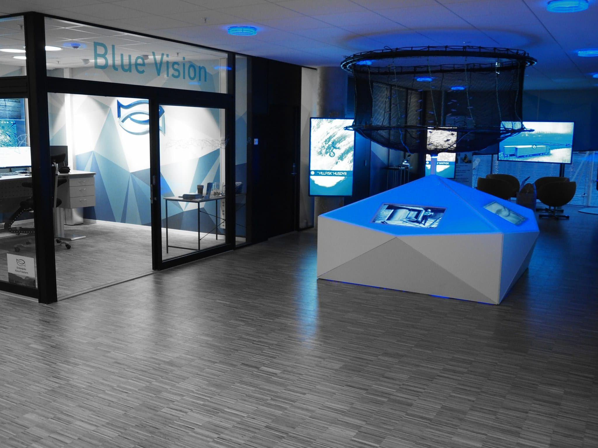 © Blue Vision, Blue Vision