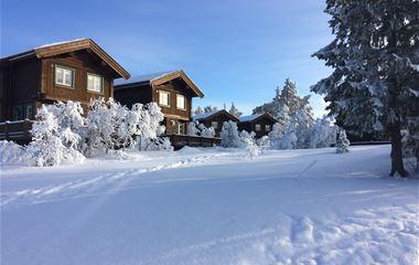 Lofsdalen Panorama, hus nr 3B, 7+3 bäddar (djurtillåten)