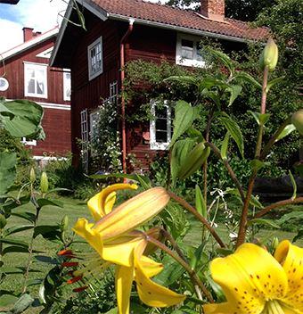 Wiborggården B&B, Boda, Rättvik