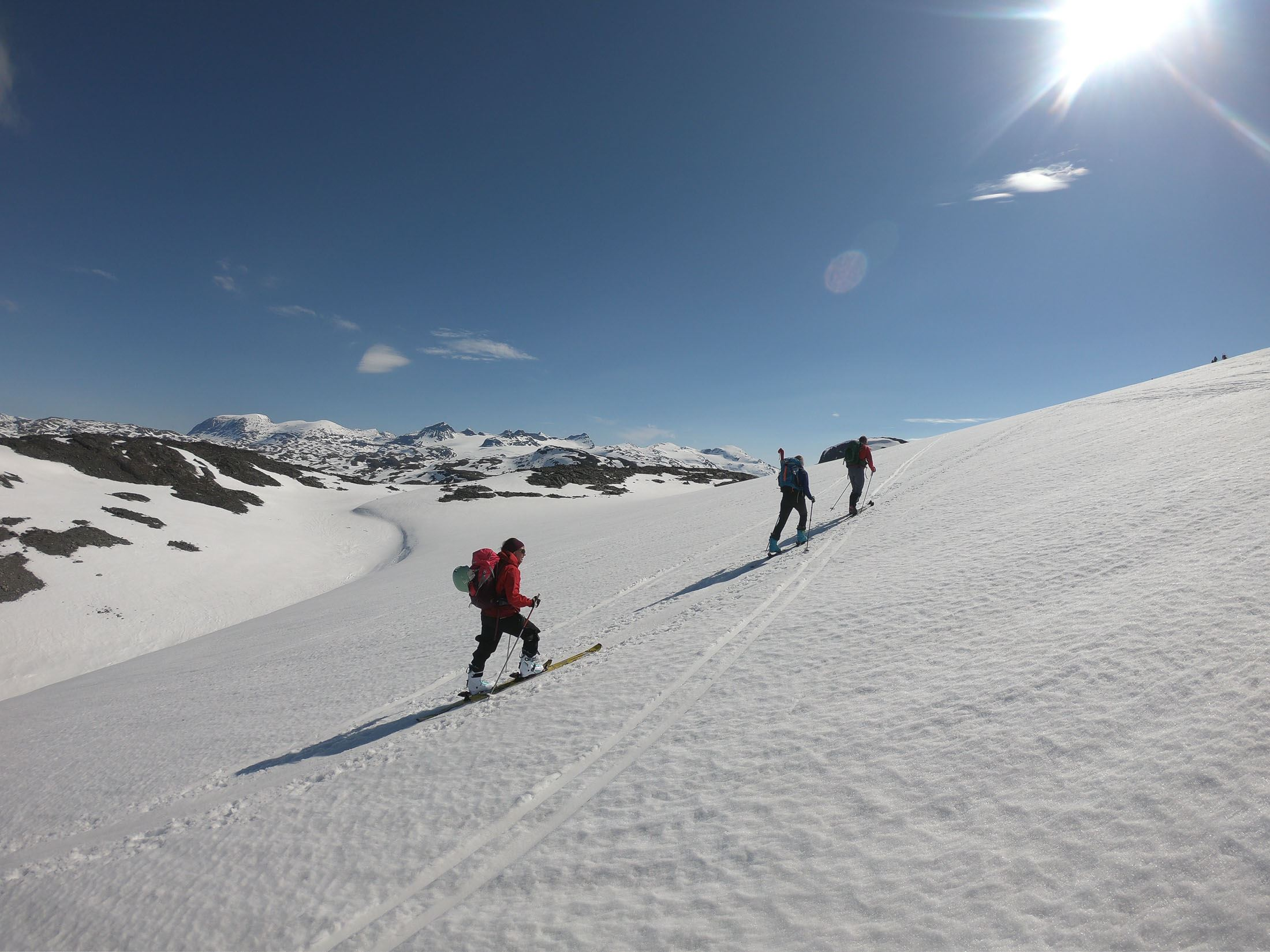 Guided tours in Rondane