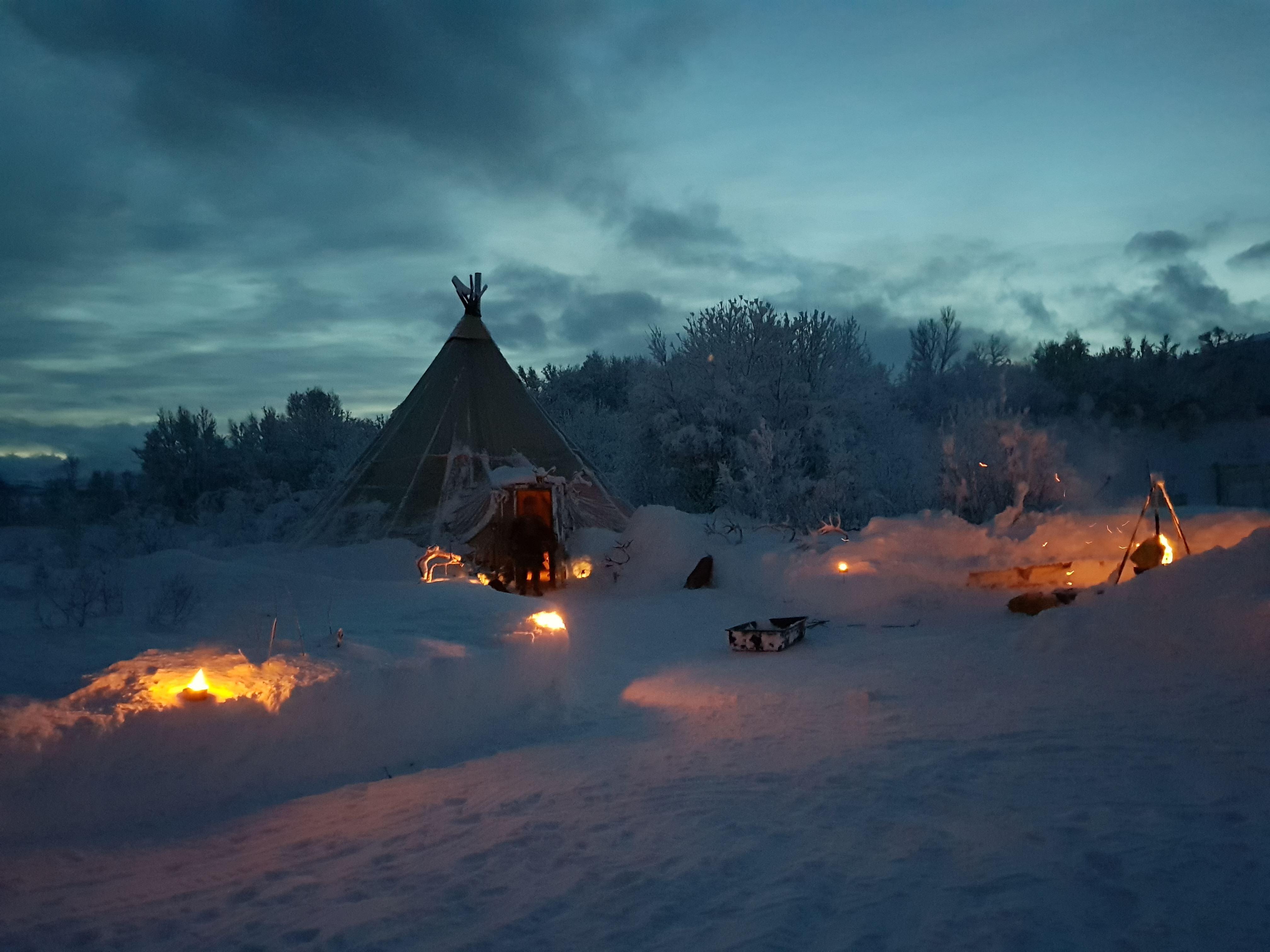 Reindeer Sledding in SamiCamp