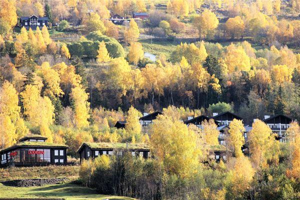 Høstferie i Hunderfossen familiepark