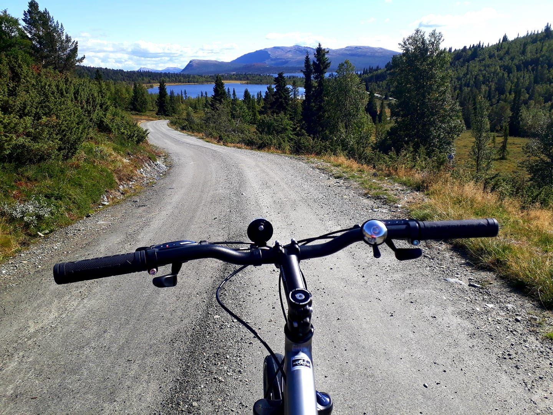 Rondane Fjellstue, Rondane Fjellstue