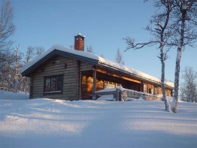 Cottage 316 6 beds