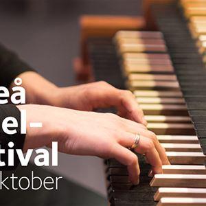 Från Bach till Riverdance - Umeå Orgelfestival